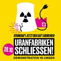 Alles zur Lingen-Demo